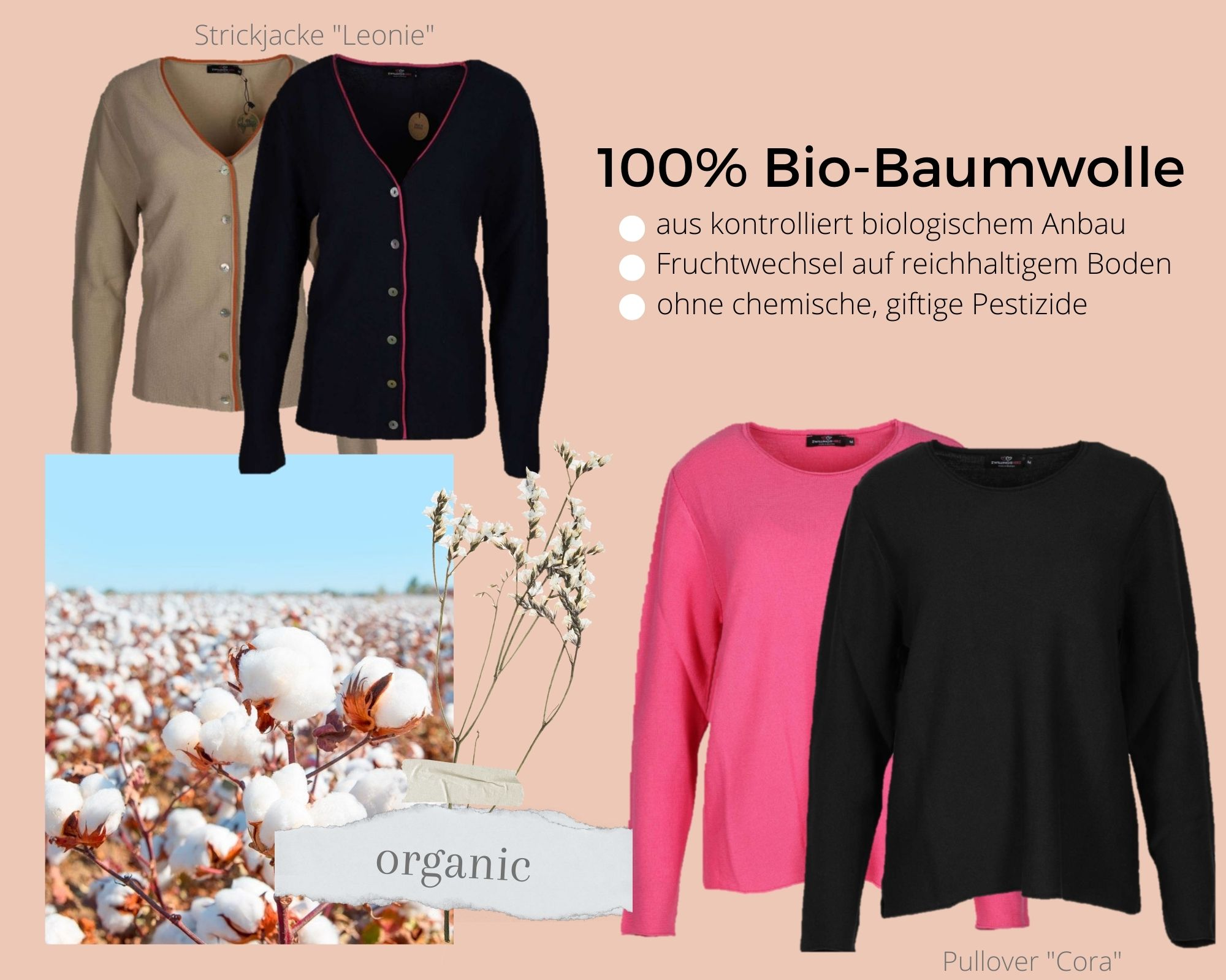 baumwolle-bild
