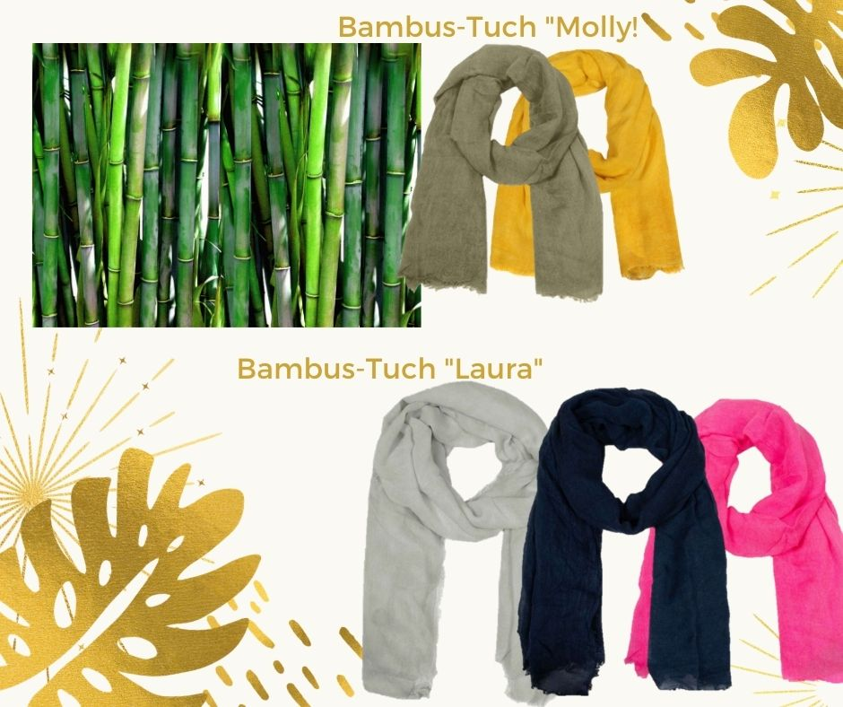 bambus-bildArcUxsiKZupIr